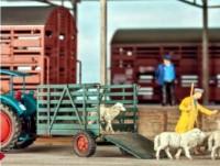 1:87 Anhänger einachsig für Viehtransporte - Weinert 4525  | günstig bestellen bei Weinert-Bauteile